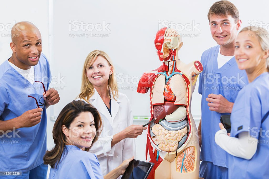 Instructor And Students In Medical School Anatomy Class Stock Photo ...