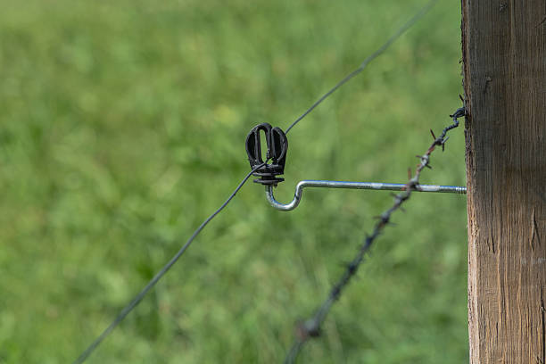 Insulator of an electric fence. stock photo