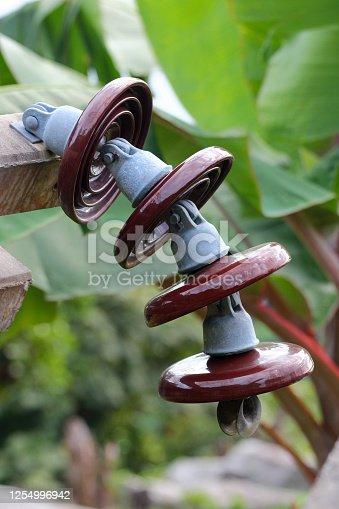 Insulator on a power pylon in tropical jungle