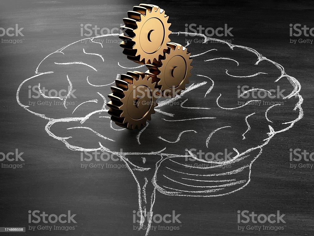 intelligence royalty-free stock photo