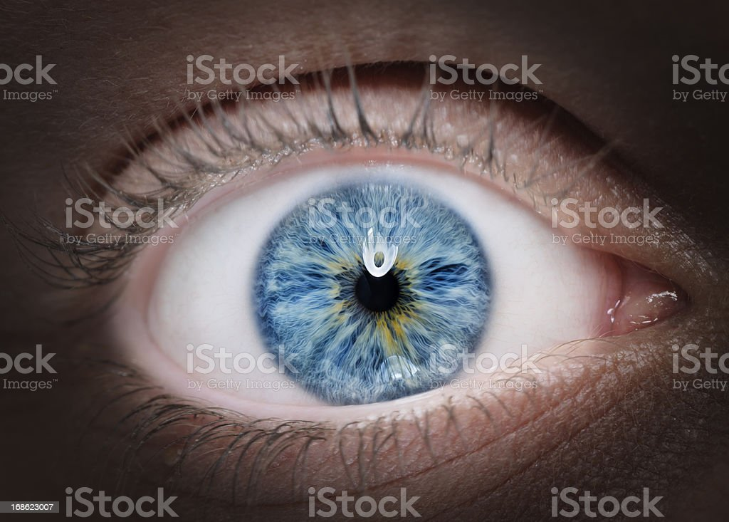 intense blue eye stock photo