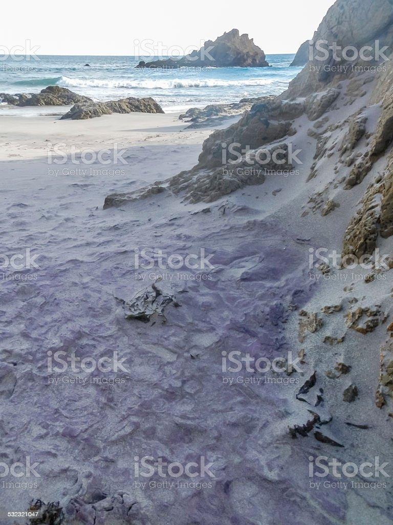 Intense Purple stock photo