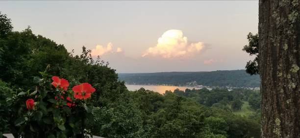 Interesting Cloud Formation at Dawn/Dusk Over a Body of Water, with Florals and Greenery stock photo