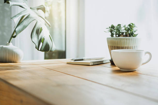 Interior and Decoration Closeup white cup of coffee with small trees and green leaf in vase on wooden table morning stock pictures, royalty-free photos & images
