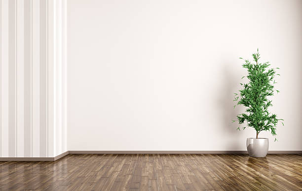 Interior background of room with plant 3d rendering stock photo