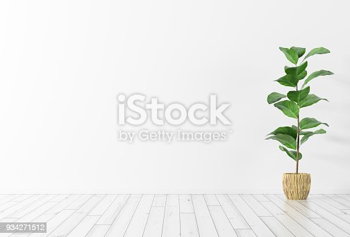 Interior background of room with white wall, wooden floor and green plant 3d rendering