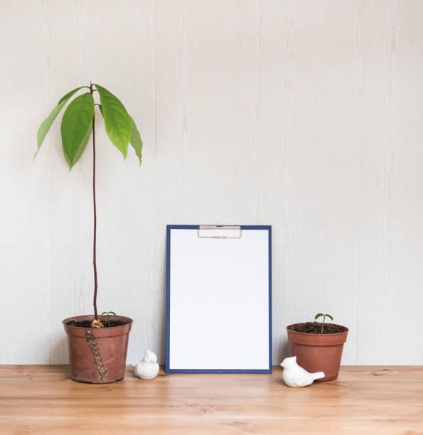 Innenarchitektur Desktop. Zwischenablage mit leerem A4 Paper Mock up und Hauspflanzen. Stilvolle minimale Home Decor – Foto