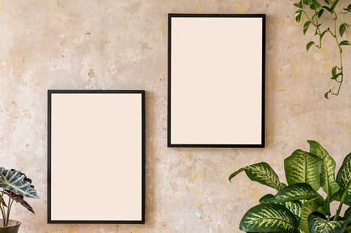 Interior design of living room with two black poster mock up frames, a lot of plants in design pots, and elegant personal accessoreis. Minimalistic concept. Grunge wall. Stylish home decor. Template.