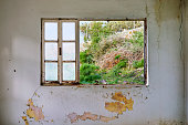 Interior of a ruined house with old, dirty and cracked white wall and a broken window frame overlooking to the meadow view