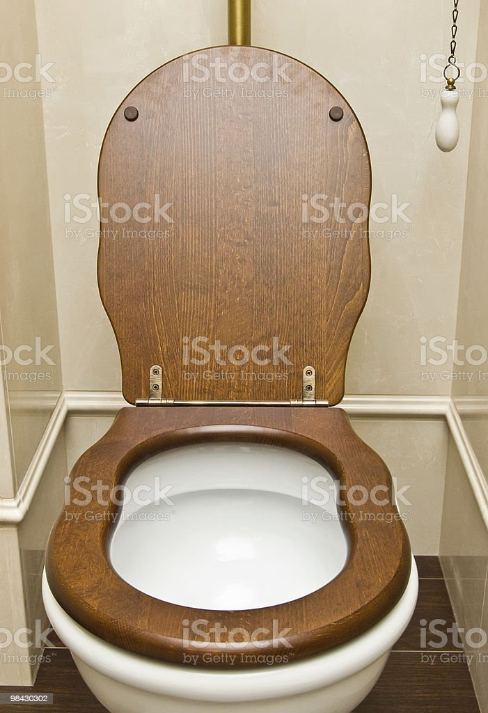interior of a typical water-closet royalty-free stock photo
