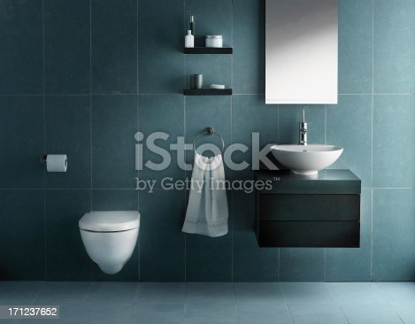 Interior of modern bathroom in cold tone