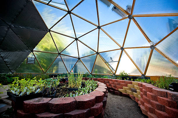 Interior of Beautiful Greenhouse Dome stock photo