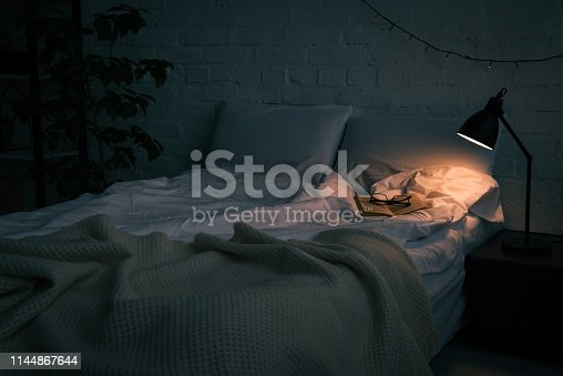 Interior of bedroom with book and glasses on empty bed, plant and lamp on black nightstand at night