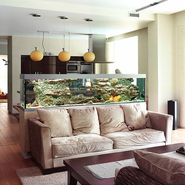 interior of living room - home aquarium stock photos and pictures