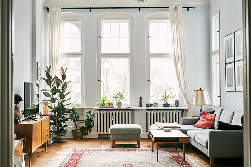 Interior of empty apartment. Plants and furniture at home. Television set in living room.