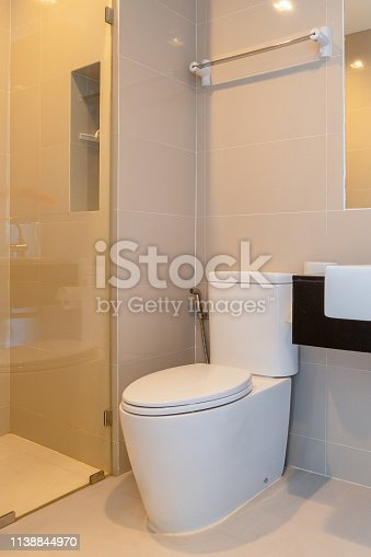 618327092istockphoto Interior of modern design home bathroom with shower and toilet 1138844970