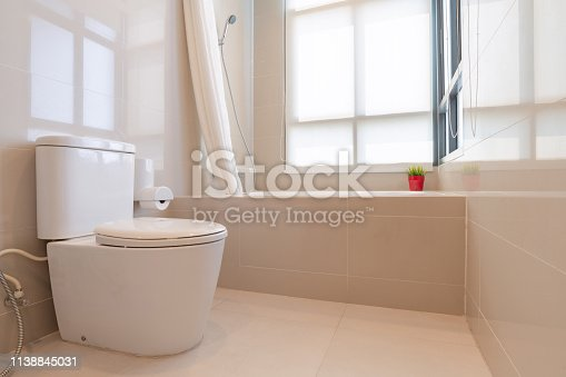 618327092istockphoto Interior of modern design home bathroom with shower and toilet 1138845031