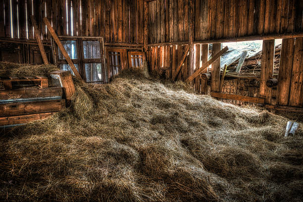 Interior Of Old Barn Stock Photo