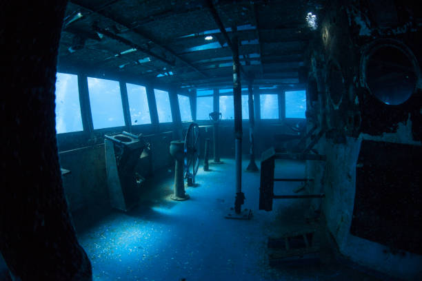 interior of submerged shipwreck in grand cayman - artificial reef stock pictures, royalty-free photos & images