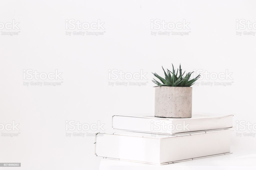Interior Style Home Decor With Tree And Book On White Wall