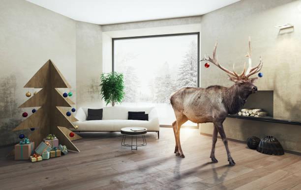 interieur mit sperrholz weihnachtsbaum und der hirsch - weihnachtsideen stock-fotos und bilder