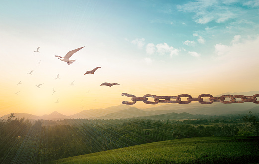 Silhouette of bird flying and broken chains at beautiful mountain and sky autumn sunset background