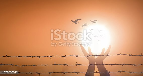 1068588904 istock photo International human rights day concept 1078005012