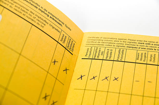 international vaccination record book stock photo