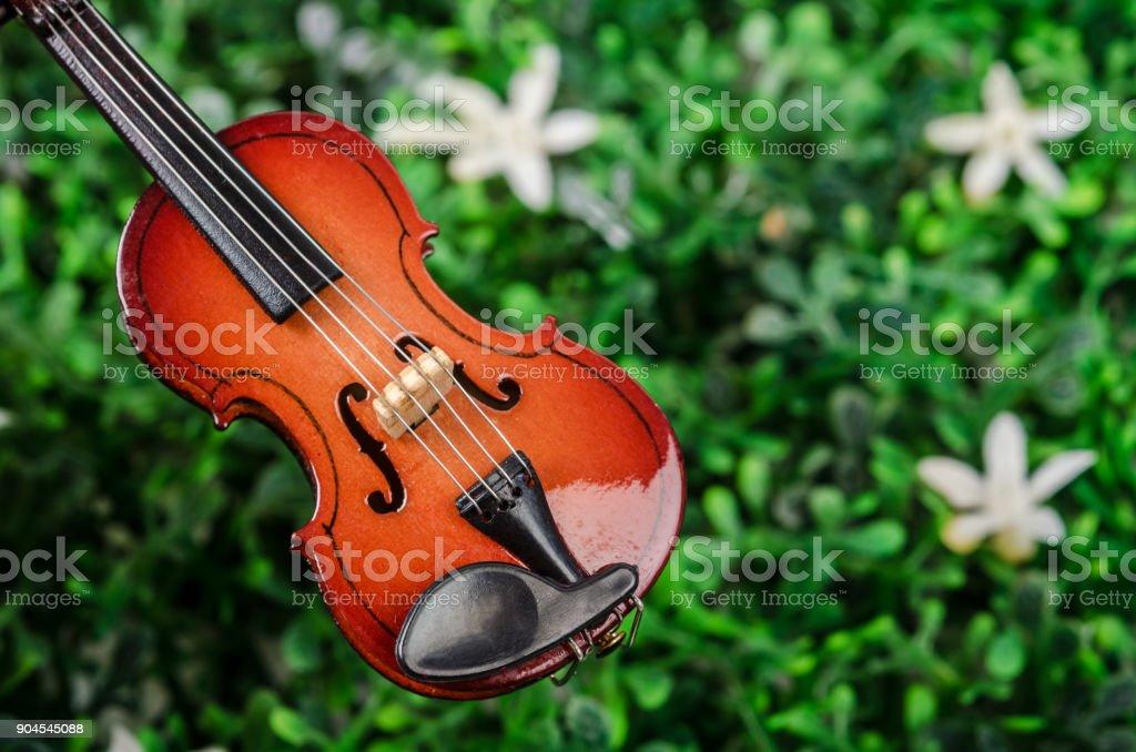 International violin day stock photo