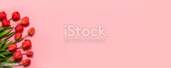International Women on a red background. Fresh flower composition, bouquet of red color tulips. Flat lay with copy space.