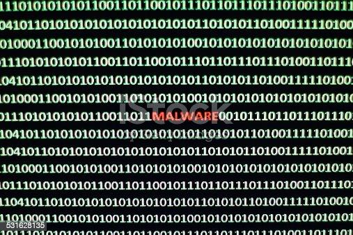 1054934004 istock photo Internet Malware 531628135