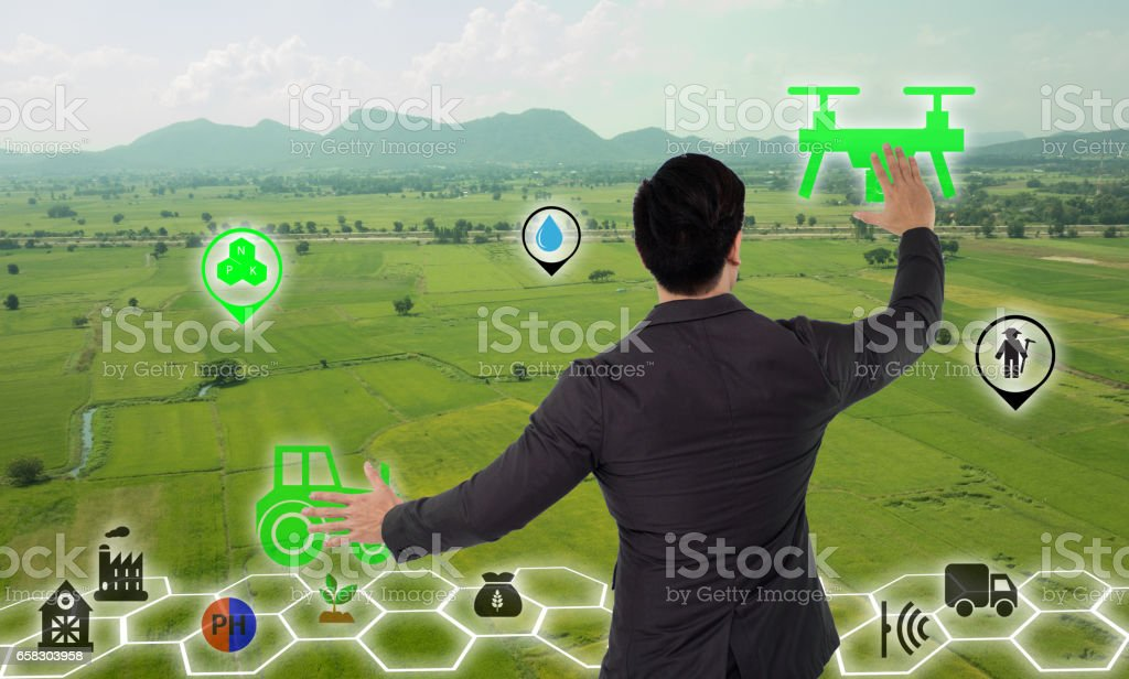 Internet of things(agriculture concept),smart farming stock photo