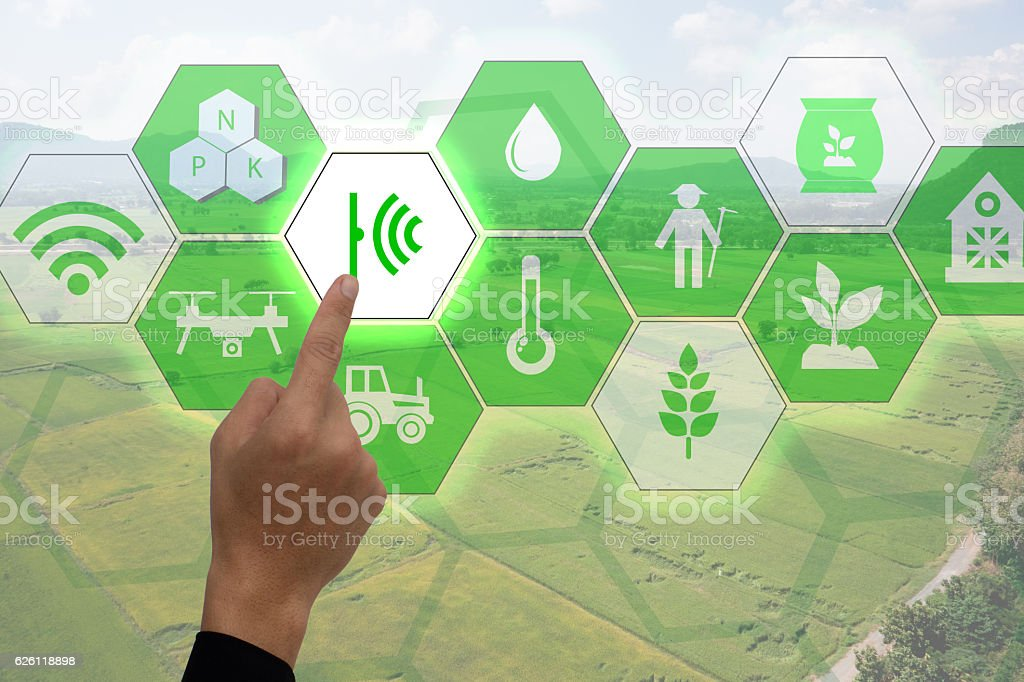 Internet of things(agriculture concept),smart farming,industrial agriculture stock photo