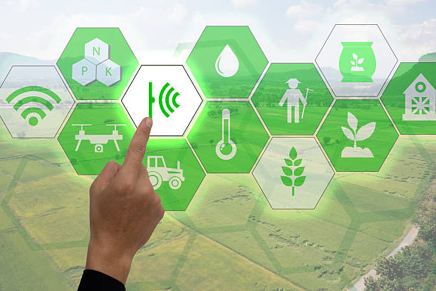 Internet of things(agriculture concept),smart farming,industrial agriculture - foto de stock