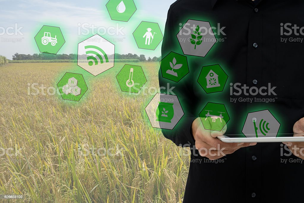 Internet of things(agriculture concept),smart farming,industrial agriculture. - foto de stock
