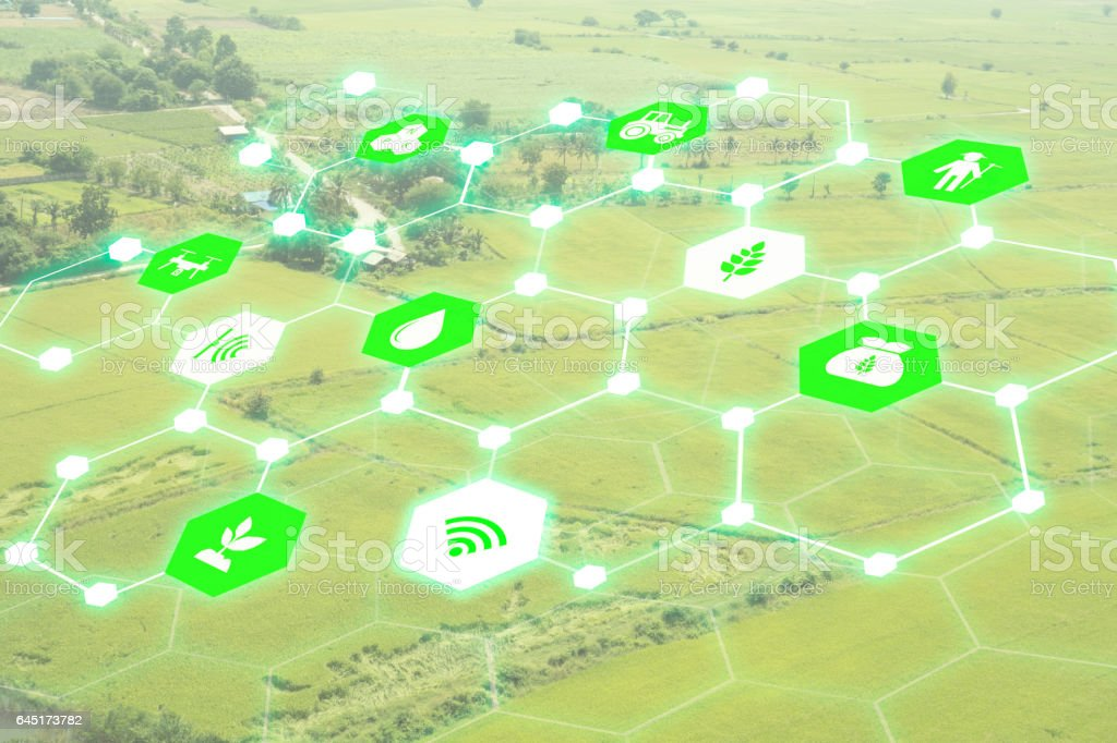 IOT, internet of things,technology in green energy concept, stock photo