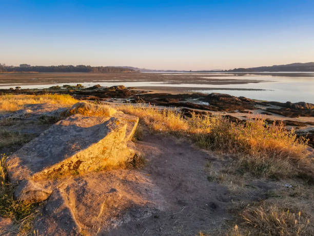 Intertidal complex of the natura 2000 network stock photo