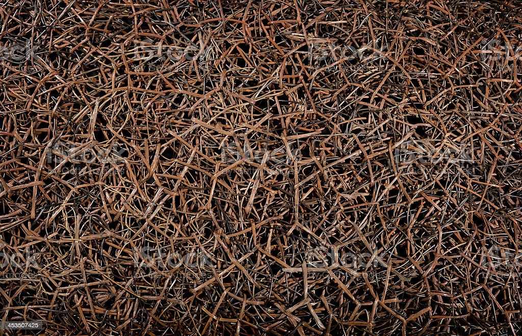 Intertwined branch background royalty-free stock photo