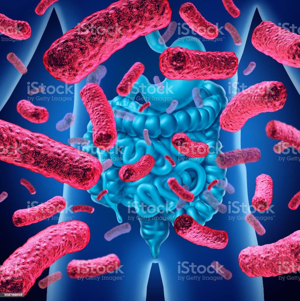 Intestine Bacteria stock photo