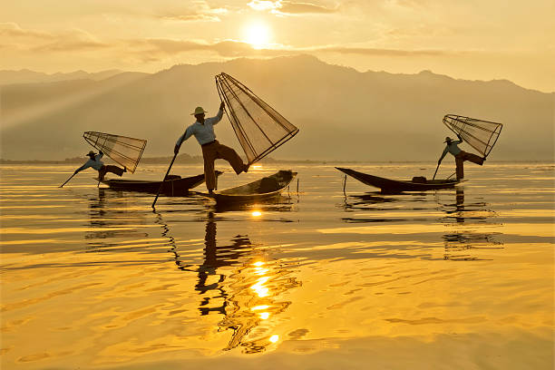 Intha Fishermen At Dawn Using native fishing nets, the fishermen of Inle Lake start their work day at first light. Inle lake is a UNESCO Biosphere Reserve site. myanmar stock pictures, royalty-free photos & images