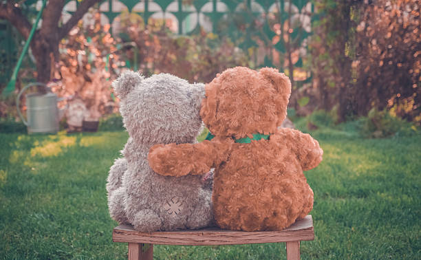 Best Romantic Teddy Bear Stock Photos Pictures Royalty