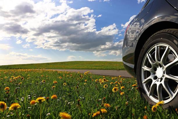 in die natur mit dem auto. ein schwarzes auto steht in einer löwenzahn wiese - regierungsbezirk schwaben stock-fotos und bilder
