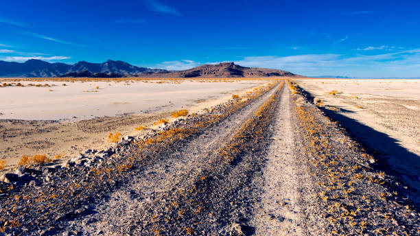 Into the Salt Flat The Causeway leads straight into the heart of Bonniville Salt Flat bonneville salt flats stock pictures, royalty-free photos & images