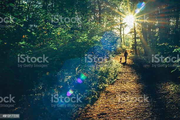 Into the woods picture id491317220?b=1&k=6&m=491317220&s=612x612&h=pryxkpqxqxtoxsxzxejmtlne xycfruxxq8tm4epaaw=