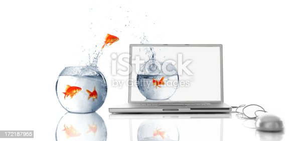 istock Into Virtual World 172187955