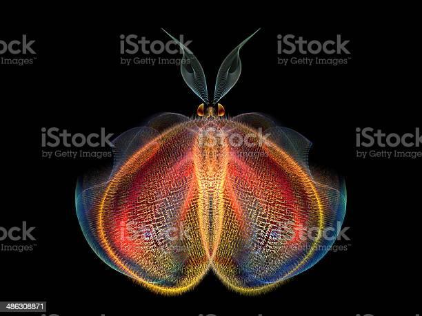 Intricate butterfly picture id486308871?b=1&k=6&m=486308871&s=612x612&h=jqwnwl3hkfc7mwl4avis4ktswo2veadykae4k  icji=