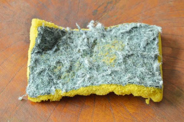 invalid green and yellow scrub sponge - spugna per le pulizie foto e immagini stock
