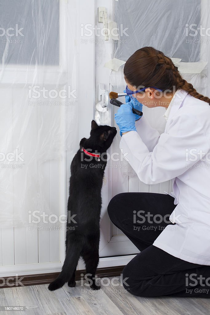 Investigation on Crime scene and curious cat royalty-free stock photo