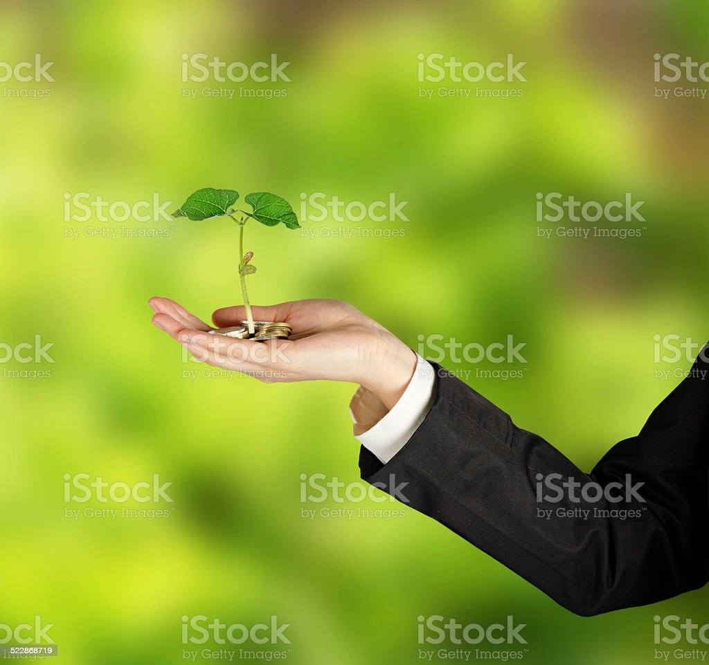 Investing to green business - Royalty-free Adult Stock Photo