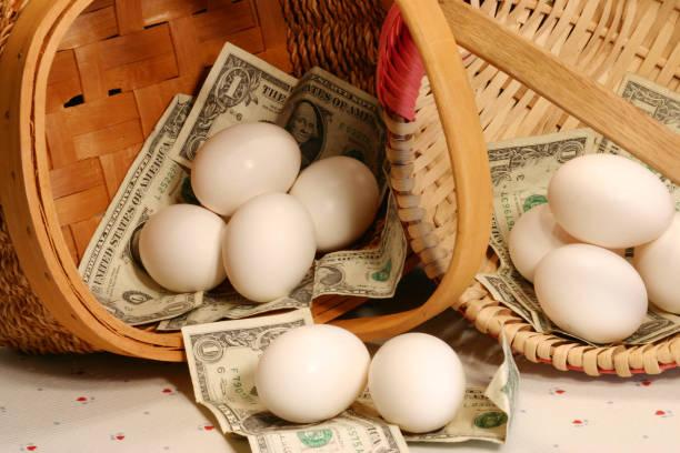 investment advice stock photo